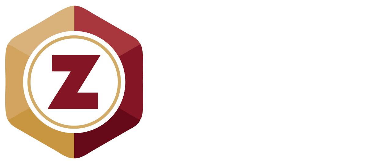 Zicli Synergy